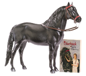 BRY 1288 Blackjack Model and Book Set